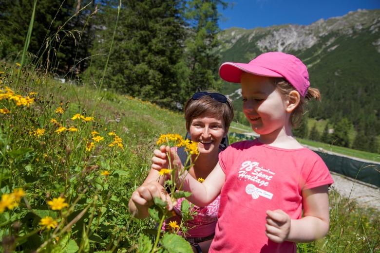 Waldtag und Kräuterwanderung Brandnertal, Sommerurlaub in Vorarlberg