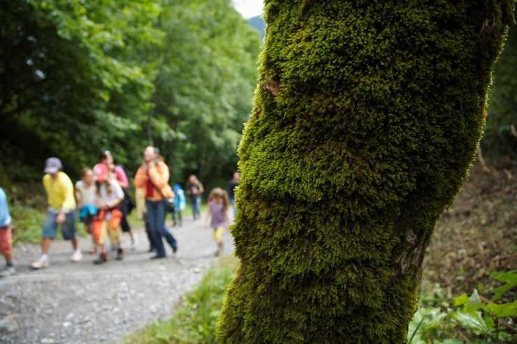 Familienwanderung im Urlaub, Sommerurlaub in Vorarlberg