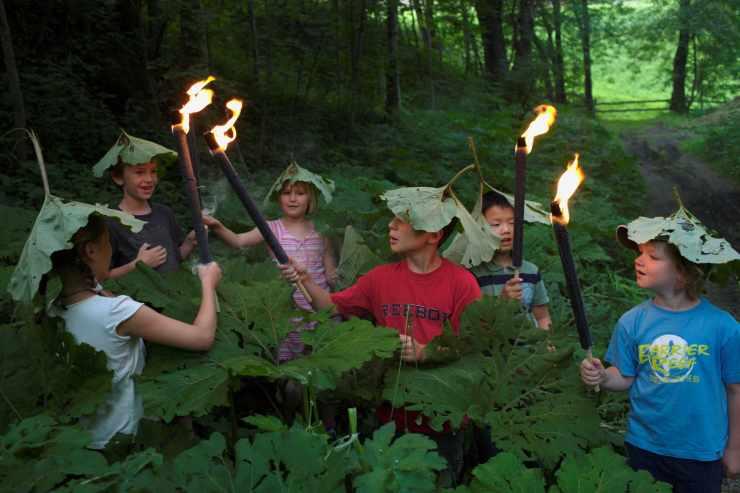 Kinderbetreuung in der Natur
