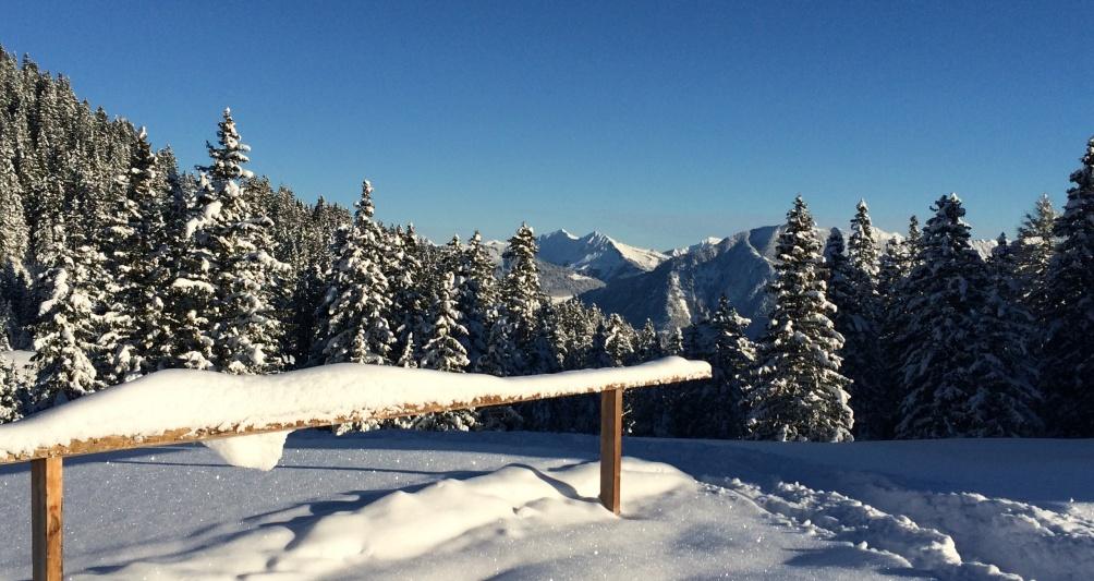 Abseits der Piste, Winterwandern, Rodeln, Familienferien in Vorarlberg, Familienhotel Lagant, Brand