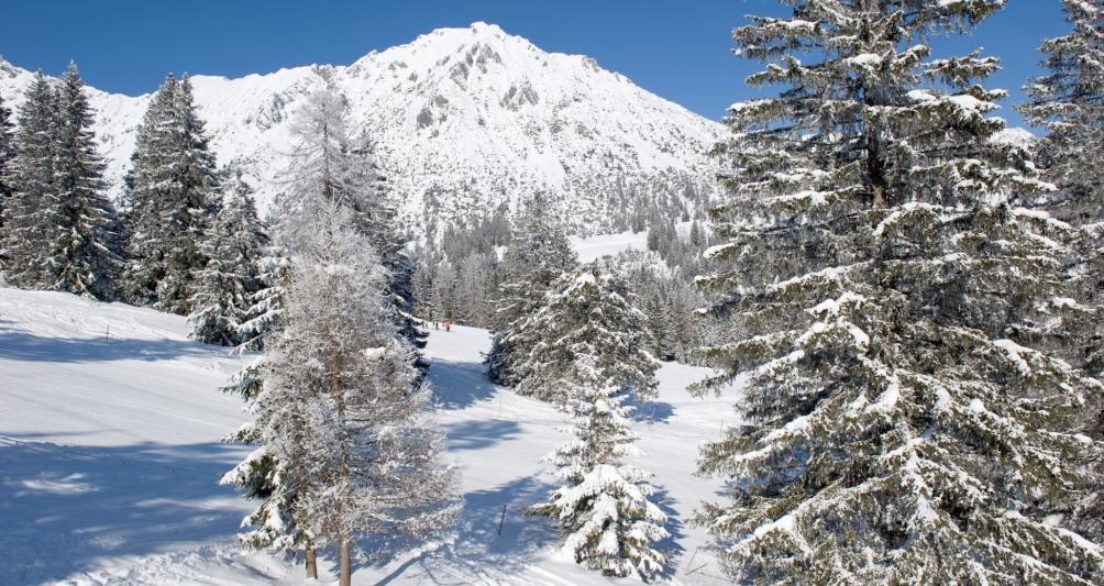 Webcam und Livecam ins Skigebiet Brandnertal, Vorarlberg